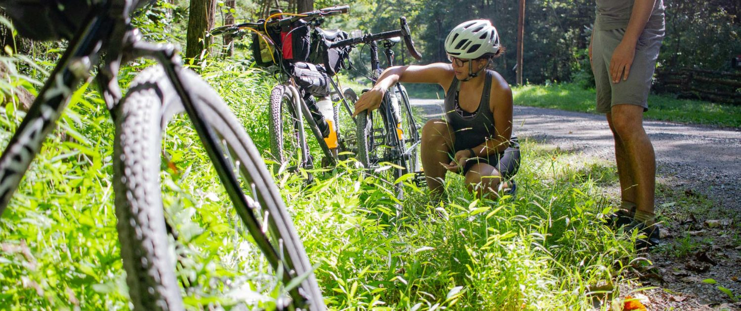 TransVirginia – Gravel Bikepacking Route from DC to Damascus